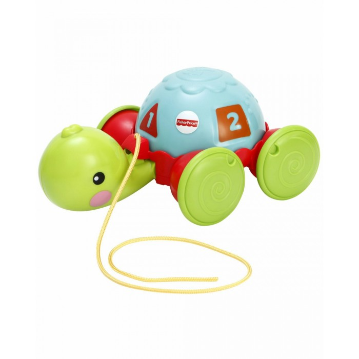 Каталка-игрушка Fisher Price Обучающая черепашка на колесикахОбучающая черепашка на колесикахЧерепаха представляет собой игрушку, которая растет с ребенком, Вы можете играть с ним в двух направлениях.   Дети могут катать черепаху по полу и поворачивать панцырь, который учит детей распознавать цифры, формы и цвета.   Далее детям, которые уже умеют ходить можно также выводить черепаху на прогулку, потому что игрушка оснащена шнуром.  Во время движения черепаха ритмично кивает головой.   Она призывает детей играть, узнавать причинно-следственные связи и стимулирует детей ходить в одиночку.  Игрушка способствует двигательным навыкам ребенка, позволяет на практике улучшить баланс и координацию.<br>