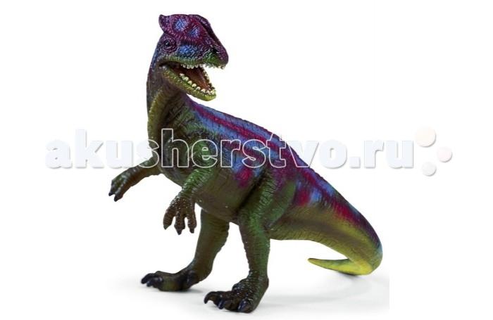 Schleich Игровая фигурка Дилофосаурус ДинозаврыИгровая фигурка Дилофосаурус ДинозаврыДилофозавр — род хищных динозавров, существовавших в начале юрского периода. Дилофозавр достигал шести метров в высоту длины и весил, как можно предположить, около полутонны. Наиболее примечательная деталь в его внешности - это два округлых гребня на маленькой голове. Зубы динозавра были длинными, острыми, как и подобает хищнику. Но, несмотря на столь внушительный набор лезвий у себя во рту, питался дилофозавр в основном падалью. Теперь у себя дома вы сможете завести маленького пластмассового динозаврика, очень похожего на настоящего доисторического хищника.<br>