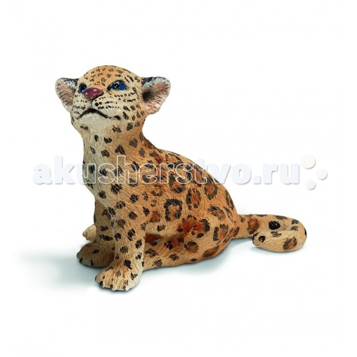 Schleich Игровая фигурка Детеныш ягуара сидитИгровая фигурка Детеныш ягуара сидитНазвание леопард произошло от соединения двух греческих слов: лев и пантера, в связи с тем, что древние считали леопарда гибридом этих животных. В настоящее время леопард обитает в Восточной Азии и Африке. Численность этих зверей постоянно падает из-за браконьеров и малого количества пищи. Поэтому еще в 20 веке красивая пятнистая кошечка была занесена в мировую Красную книгу.  Детально прорисованная фигурка детеныша леопарда понравится малышу. Он почувствует себя участником захватывающего сафари, и с наслаждением будет рассматривать этого грациозного зверя, внешне такого беззащитного, красивого и милого.<br>