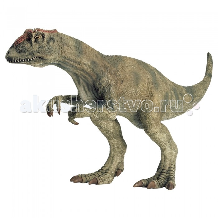 Schleich Игровая фигурка АллозаврИгровая фигурка АллозаврОдин из самых известных динозавров - аллозавр, специалистами часто называется Большой Ал. Этот доисторический динозавр, ростом около 5 метров и весом более тонны, был самым крупным хищником. У него был уникальный скелет, его ребра были прикреплены не к костям, а к самой коже. У Аллозавра были короткие передние лапы с острыми когтями, которыми он ловил свою добычу. Аллозавры часто охотились в группе.   У фигурки Аллозавра открывается пасть, от этого игра с динозаврами становится еще более увлекательной и реалистичной. Все фигурки животных Schleich выполнены из высококачественных материалов с максимальной точностью и раскрашены вручную. Не вызывают аллергии.<br>