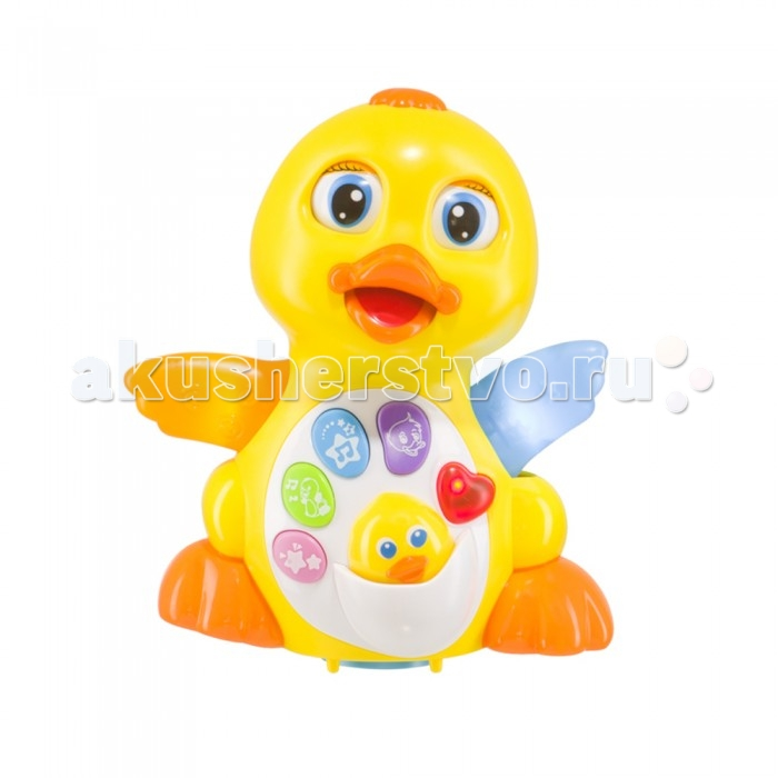 Музыкальная игрушка Happy Baby QuackyQuackyУточка QUACKY подарит малышу большое количество положительных эмоций и новых впечатлений, поможет развить его основные навыки и способности. Если малыш еще учится ползать, уточка будет играть с ним в догонялки, обходя любые препятствия, а когда ребенок начнет сидеть, она будет развлекать его забавными мелодиями и мимическими движениями.  Детям очень полюбится милая уточка с утенком, так как это одна из первых птиц, с которой малыш знакомится по картинкам или вживую при помощи родителей. Крылышки уточки во время проигрывания мелодий светятся, приводя в восторг ребенка.  Игрушка QUACKY развлечет малыша, споет веселые песенки и поднимет настроение на весь день!<br>