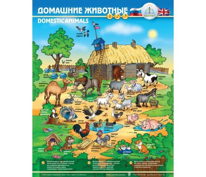 Знаток Электронный звуковой плакат Домашние животныеЭлектронный звуковой плакат Домашние животныеЭлектронный звуковой плакат ЗНАТОК Домашние животные - ребенок узнает о животных, которые живут рядом с человеком и услышит звуки, которые они издают.  На плакате изображена ферма, на которой живет множество различных домашних животных - лошади, коровы, козы, овцы, собаки, кошки, куры, утки. Нашлось место для верблюдов, маленьких морских свинок и даже для пчел. Многие животные изображены вместе со своими детенышами: овца с ягненком, свинья с поросенком, кошка с котятами и т.д. Изображение фермы можно разглядывать долго, находя каждый раз новые детали.  У плаката 3 режима работы: Пояснение, Звуки и Экзамен В режиме Пояснение при нажатии на кнопку рядом с изображением животного ребенок услышит краткий рассказ об этом домашнем животном. В режиме Звуки при нажатии на кнопку рядом с изображением животного ребенок услышит звуки, которые издает это животное: лай собаки, мычание коровы и т.д. В режиме Экзамен ребенок может проверить усвоенные знания. Плакат задаст ребенку вопрос, а ребенок должен найти ответ и нажать на соответствующую кнопку. В случае правильного ответа плакат похвалит ребенка. При неправильном ответе плакат просит повторить попытку. На ответ дается 2 попытки. При повторной ошибке плакат переходит к следующему вопросу.  С помощью этого плаката ребенок узнает много нового и интересного. Плакат можно повесить на стену или расположить на столе. Громкость звучания плаката можно регулировать. Плакат очень умный - он умеет экономить батарейки. Если ребенок перестает играть с плакатом, он отключается. Игра с таким плакатом способствует развитию наглядно-образного мышления, представления о предметах и явлениях окружающего мира, воображения, восприятия, расширению кругозора, увеличению словарного запаса.  В набор входит: электронный плакат, динамик, 3 батарейки типа ААА.  Размеры плаката: 47 см х 58,5 см. Материал: ламинированный картон, пластик. Размеры упаковки: 23 см