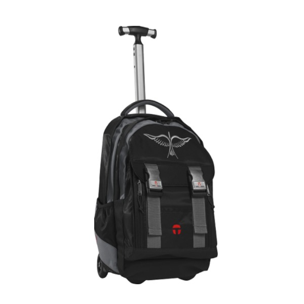 Портфели Take It Easy Рюкзак на колесах с телескопической ручкой Феникс