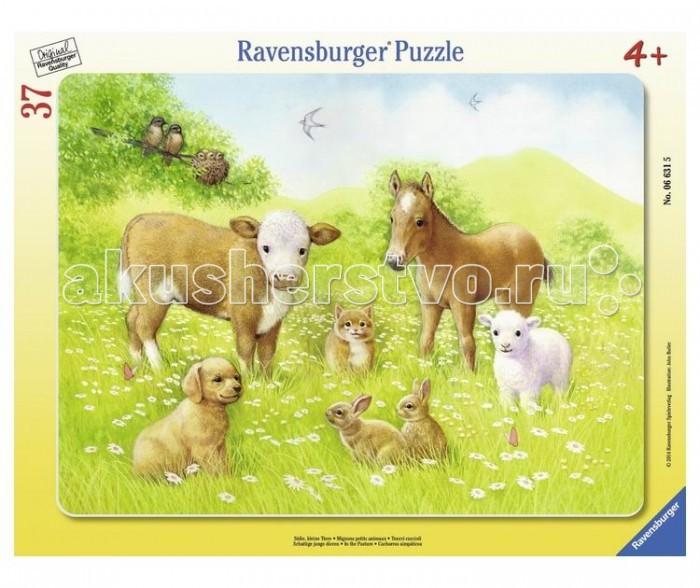 Ravensburger Пазл На лугу 37 элементов