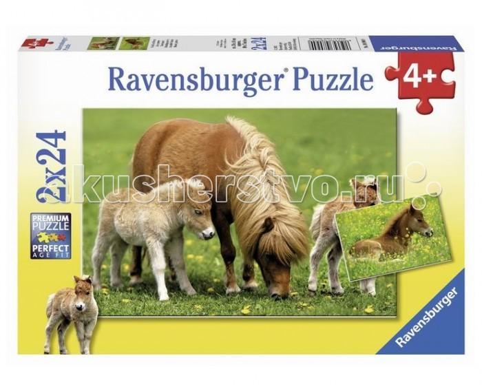 Ravensburger ���� �������������� ���� 2�24 ���������