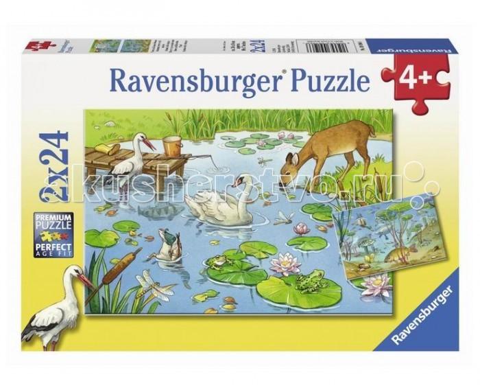 Ravensburger Пазл На пруду 2х24 элементов