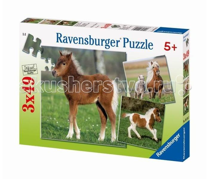 Ravensburger ���� ������� ���� 3�49 ���������