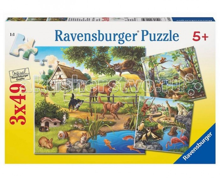 Ravensburger ���� ���, �������, �������� �������� 3�49 ���������