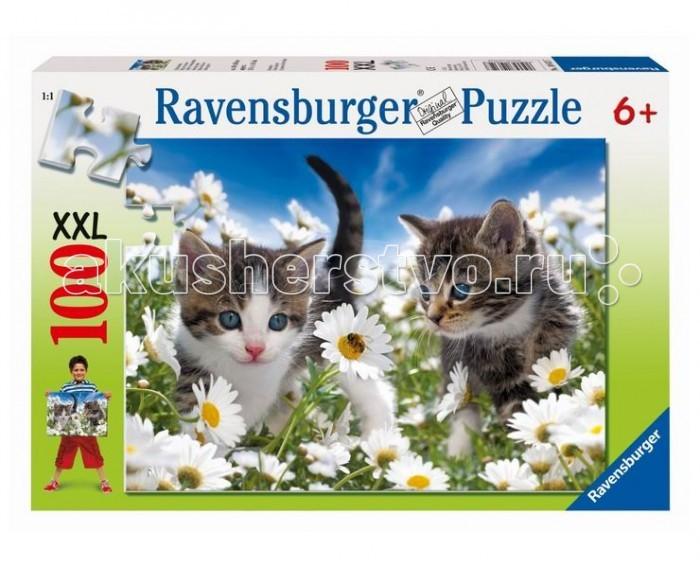Ravensburger ���� ������ � �������� 100 ���������