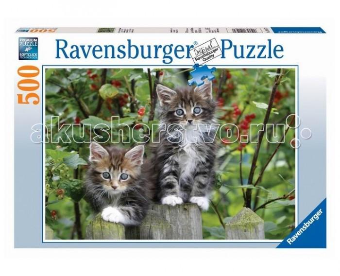 Ravensburger Пазл Котята на заборе 500 элементов