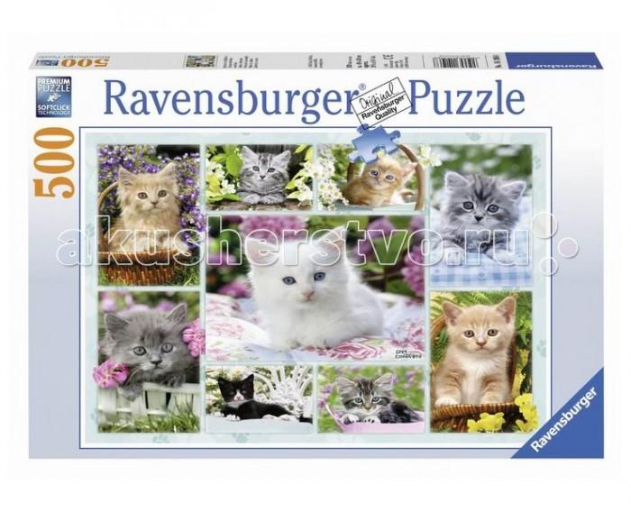 Пазлы Ravensburger Пазл Галерея котят 500 элементов