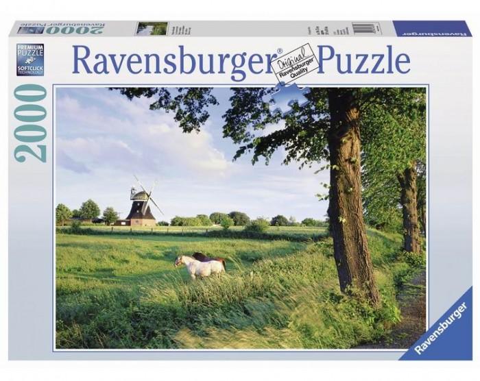 Ravensburger ���� �������� ������ 2000 ���������