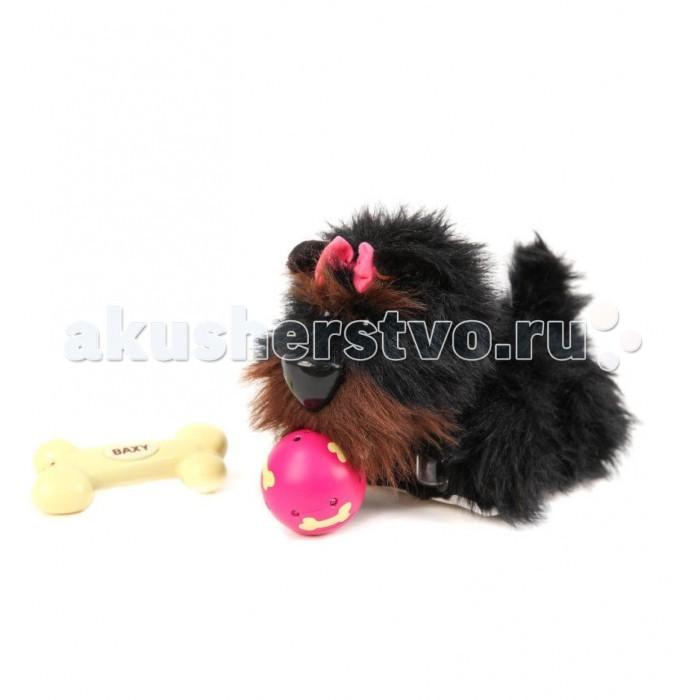 Интерактивная игрушка IMC toys Собака BAXYСобака BAXYIMC toys Собака BAXY - удивительная симпатяга, умеющая находить мяч, который вы бросили, и приносит его вам.   В наборе имеется косточка, при помощи которой управляется собачка.   BAXY умеет ходить, а также она издает разные звуки – лает, скулит, умеет фыркать, сопеть, повизгивать, всего 20 разных звуков.  Когда ребенок нажимает на кнопочку, расположенную на пульте дистанционного управления, сделанного в виде косточки, BAXY, собачка подходит к ребенку. У собачки интерактивной игрушки черная шерстка.  В наборе есть мячик со световым датчиком, на который реагирует собачка.   Для работы пульта дистанционного управления и для работы собачки интерактивной игрушки нужны 4 батарейки ААА и 4 батарейки АА (батареек в наборе нет).<br>