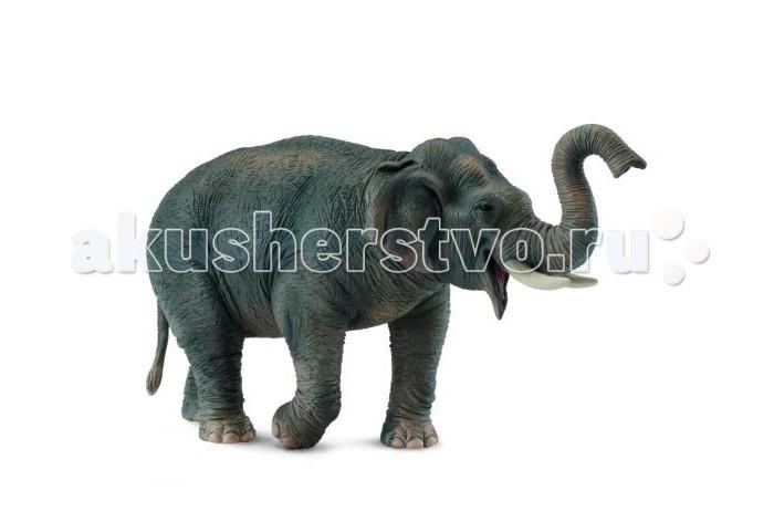 Gulliver Collecta Фигурка Азиатский слон 15 смCollecta Фигурка Азиатский слон 15 смGulliver Collecta Фигурка Азиатский слон выполнена в миниатюрной копии настоящего азиатского слона. Кажется, что игрушка вот - вот оживет.  Особенности: Все детали тщательно проработаны, что способствует развитию воображения и тактильных ощущений у ребёнка во время игры. Декоративная фигурка станет изысканным и уникальным сувениром, и понравится как детям, так и их родителям. Фигурка изготовлена из высококачественной пластмассы и раскрашены вручную.  Размеры: 15 x 4 x 8 см<br>