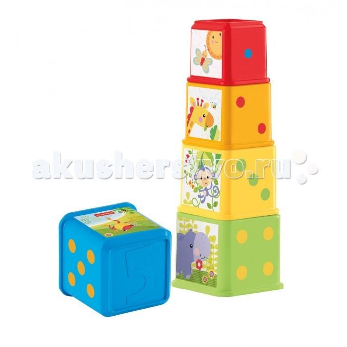 Развивающая игрушка Fisher Price Mattel Пирамида сложите и исследуйте блокиMattel Пирамида сложите и исследуйте блокиFisher Price Mattel Пирамида сложите и исследуйте блоки - пять красочных блоков разного размера, из которых можно сделать пирамидку или сложить друг в друга.  Блоки разного цвета, на них нарисованы цифры, знаки, объекты.  Игра помогает ребенку изучать окружающий мир, учиться различать цвета, считать, и изучать животный мир!<br>