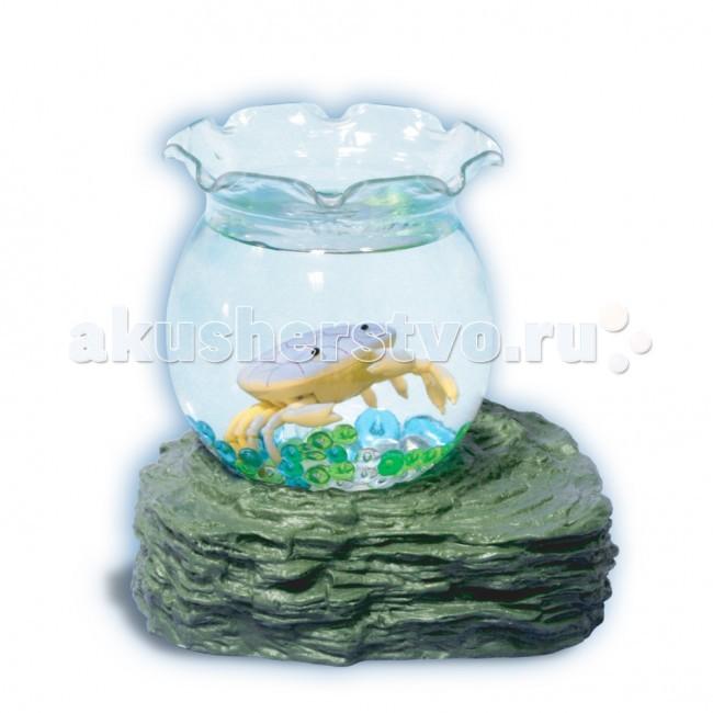 УникУМ Набор аквариум с 1 крабикомНабор аквариум с 1 крабикомНабор аквариум с 1 крабиком.   Аквариум привлекает внимание и детей, и взрослых своей красочностью и наглядностью «подводного мира».   Секрет игрушки - в подставке на магните, которая постепенно притягивает и отталкивает ярких рыбок, помещенных в аквариум. Они умеют опускаться на дно и всплывать наверх! Плавают как настоящие! Все, что для этого нужно - вставить батарейки в подставку, налить воду в емкость, - и жизнь в аквариуме «оживает».  Игрушка-новинка ТМ «Уникум» развивает воображение, веселит малышей и знакомит их с окружающим миром.   В комплекте вместо рыбок могут быть другие обитатели подводного мира.<br>