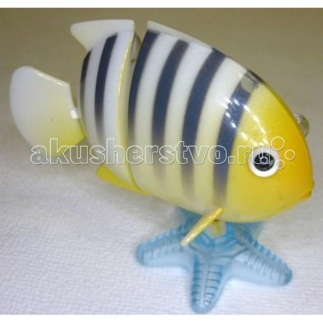 Заводные игрушки Hans Заводная игрушка Коралловая рыбка