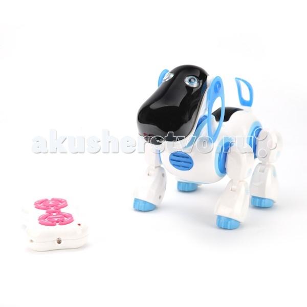 Интерактивная игрушка Играем вместе Робопес B903251-R