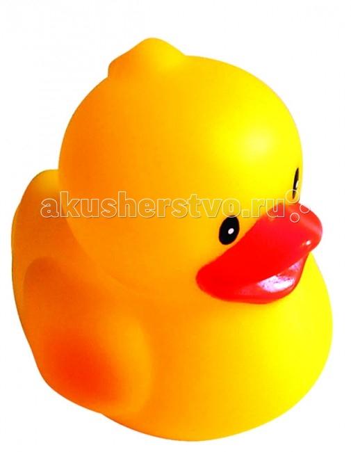 ПОМА Игрушка для ванны Любопытный утенокИгрушка для ванны Любопытный утенокИгрушка для ванны Любопытный утенок  Занимательные игрушки для игры в воде. Развивают координацию движений. Знакомят малыша с окружающим миром.  Мягкие на ощупь. Брызгают водой и не тонут.  Рекомендуемый возраст: от 12 месяцев Материал: ПВХ  ПОМА® непрерывно совершенствует свою продукцию, делая ее еще более удобной, функциональной и привлекательной, расширяет ассортимент выпускаемой продукции. Постоянное общение с родителями, педиатрами и детскими психологами помогает создавать оптимальный для российского потребителя ассортимент. ПОМА® — это удобно, доступно, безопасно, красиво и понятно.<br>