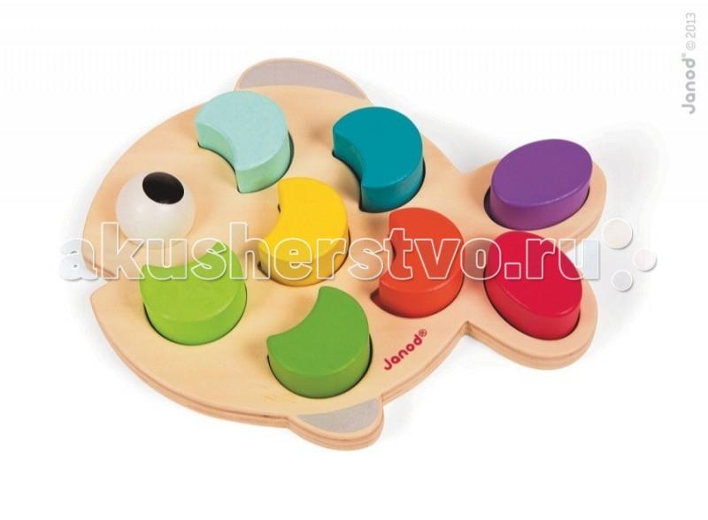 Сортер Janod РыбкаРыбкаJanod Сортер Рыбка.  Эта игрушка многофункциональна. Играя, ребенок повторяет основные цвета, учится обобщать, считать и сортировать.Стильная рыбка покрыта разноцветными деревянными чешуйками, для каждой из которой цветом определено свое место. Применяются основные цвета -зеленый, салатовый, желтый, красный, оранжевый, синий, сиреневый - такие же, как у радуги.  Чешуйки не только раскрашены, но и имеют разную форму - овал, полумесяц и круг. А самой яркой фигурой выделяется большой глаз, который обязательно будет с улыбкой смотреть на вашего ребенка.Задача ребенка научиться сортировать элементы игрушки по цветам и форме, считать, менять местами и крепко держать элемент сортера в маленькой ручке. Очень важно, что бы ребенок делал первые шаги в обучении через игру.  Игрушка упакована в красивую подарочную коробку.Французский производитель Janod позаботился о том, что бы сделать эту игрушку максимально привлекательной и безопасной для малышей. Игрушка выполнена из дерева и окрашена безвредными красками на водной основе. Самые натуральные и безопасные игрушки для малышей и детей постарше премиум-класса.  Все игрушки и игровые наборы сделаны из натуральной древесины или картона. Безопасные для контакта с ребенком краски на водной основе. Игрушки выставляют на международных выставках под маркой green toys зеленые игрушки, т.е. экологически безопасные Изысканный французский дизайн Превосходное качество - необыкновенно гладкая и приятная поверхность Нежное и красивое сочетание цветов Эксклюзивная подарочная упаковка.<br>
