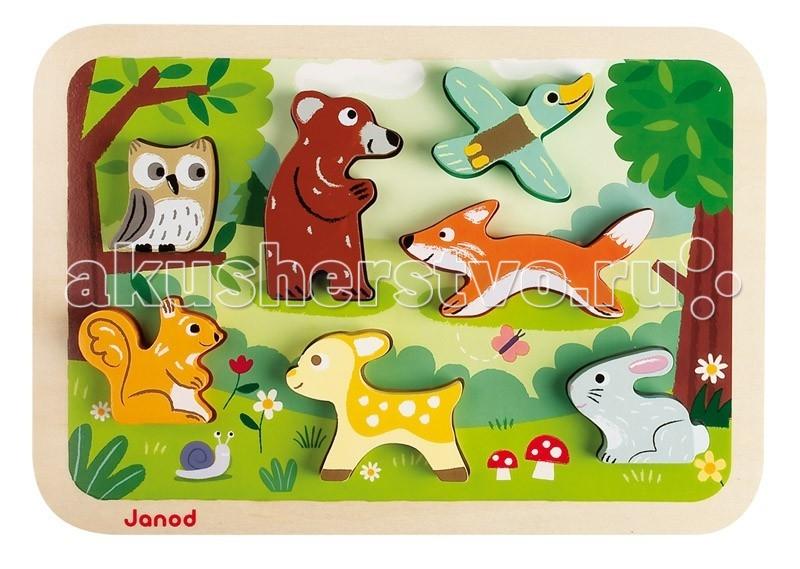 Janod ���� ��� J07023