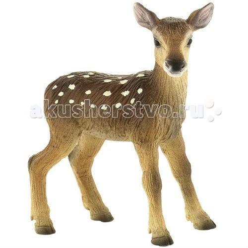 Bullyland Фигурка Детеныш благородного оленя 6,5 смФигурка Детеныш благородного оленя 6,5 смBullyland Фигурка Детеныш благородного оленя 6,5 см. - очаровательный малыш. Чаще всего олененок рождается один и питается молоком матери до года. В возрасте около одного месяца оленята начинают пробовать сочную траву. Основная защита от внешних врагов олененка – его пятнистая окраска, помогающая малышу маскироваться, сливаясь с внешней средой.   Фигурка олененка сохраняет особенности внешнего вида и анатомического строения животного.   Относится к коллекционным моделям и выполнена из высококачественных, нетоксичных материалов. Абсолютно безопасна для детей.   Размер: 55 х 32 х 63 мм.<br>