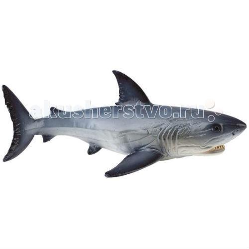 Bullyland Фигурка Белая акула 16 смФигурка Белая акула 16 смBullyland Фигурка Белая акула 16 см. - гроза морей. Акула-людоед страшна и беспощадна. Это крупнейшая хищные рыбы на Земле. Из-за постоянной охоты на акул этот вид находится на грани вымирания. Всего насчитывается около 3500 особей. Фигурка белой акулы легко узнаваема, отлично передает ее внешний вид и особенности строения.   Коллекционная фигурка, из высококачественных, нетоксичных материалов и абсолютно безопасна для детей.   Размер:165 х 110 х 60 мм.<br>