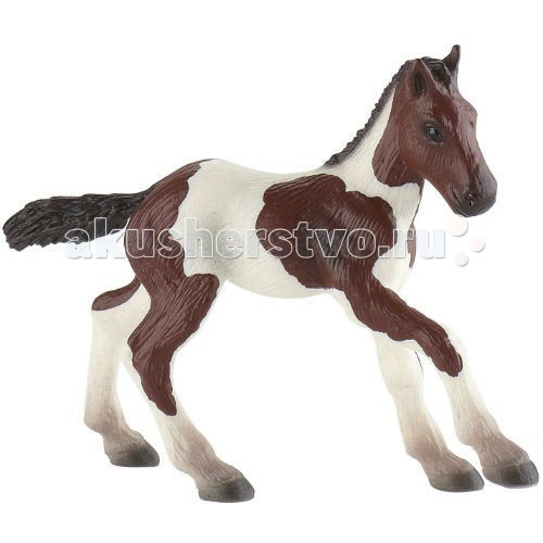 Bullyland Жеребенок породы пейнт 9,5 смЖеребенок породы пейнт 9,5 смBullyland Жеребенок породы пейнт 9,5 см. - очень красивый жеребенок с головой шоколадного цвета и таким же крупом. Ноги и спина белые. Жеребята породы пейнт обладают бурным темпераментом и веселым нравом. Чаще всего этих лошадей применяют для работы на ранчо, в конном туризме и на прогулках. Игрушка стимулирует развитие фантазии у детей, способствует созданию собственных сценариев и сюжетов для игры.   Фигурка выполнена из высококачественных, нетоксичных материалов и абсолютно безопасна для детей.   Размер: 98 х 32 х 79 мм.<br>