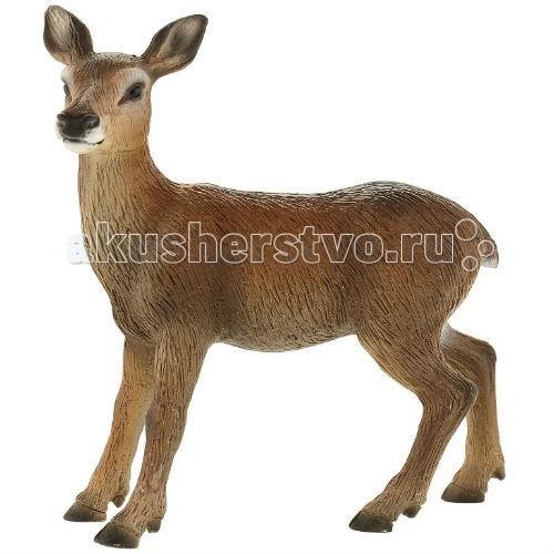 Bullyland Фигурка Самка благородного оленя 9,2 смФигурка Самка благородного оленя 9,2 смBullyland Фигурка Самка благородного оленя 9,2 см. - самка благородного оленя – очень красивое и гордое животное. Она употребляет самую разную пищу, но основой ее питания являются растения и хвоя. Олени распространены повсеместно.   Фигурка самки благородного оленя повторяет особенности внешнего вида и анатомического строения животного.   Относится к коллекционным моделям и выполнена из высококачественных, нетоксичных материалов.   Абсолютно безопасна для детей.   Размер: 85 х 38 х 90 мм.<br>