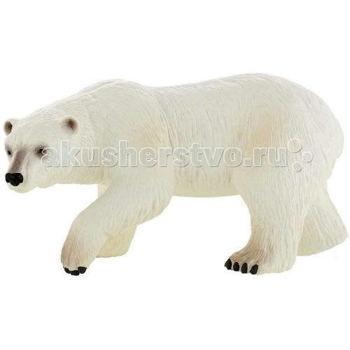 Bullyland Фигурка Полярный медведь 15 смФигурка Полярный медведь 15 смBullyland Фигурка Полярный медведь 15 см. - белый медведь - крупный, опасный для человека хищник. Как и бурый медведь в России, так и полярный медведь у народов Севера - один из главных представителей фольклора. Полярные медведи – одиночные животные, семей не создают. Они достаточно миролюбивы друг к другу, но взрослые особи могут нападать на медвежат. Животное занесено в Красную Книгу России.   Фигурка Полярного медведя отлично передает внешний вид и характер реального животного. Игрушка сделана из высококачественных, нетоксичных материалов и абсолютно безопасна для детей.   Размер: 150 х 67 х 74 мм.<br>