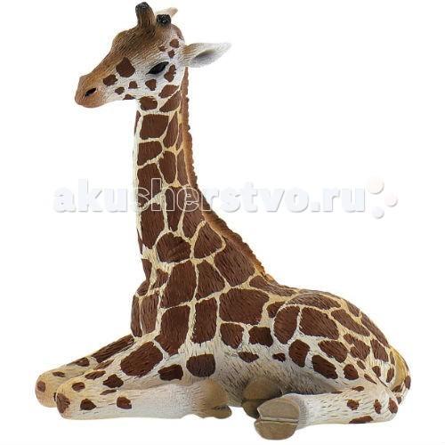 Bullyland Фигурка Детеныш жирафа 6,5 смФигурка Детеныш жирафа 6,5 смBullyland Фигурка Детеныш жирафа 6,5 см. - фигурка детеныша жирафа выполнена как коллекционная модель и полностью повторяет все особенности внешнего вида и анатомического строения животного.   Фигурка расписана вручную. Игрушка изготовлена из высококачественных, нетоксичных материалов и абсолютно безопасна для детей.   Размер: 70 х 48 х 79 мм.<br>