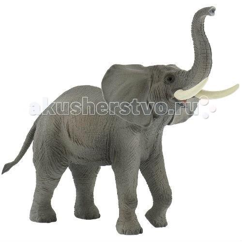 Bullyland Фигурка Африканский слон 10,5 смФигурка Африканский слон 10,5 смBullyland Фигурка Африканский слон 10,5 см. - очень симпатичное, мирное животное. Имея такой размер и вес, он умудряется кормиться растительной пищей. Главный враг африканского слона - браконьер. В популяции осталось около 500 тысяч особей.   Животное занесено в Международную Красную книгу.   Фигурка африканского слона выполнена как коллекционная модель и полностью повторяет все особенности внешнего вида и анатомического строения животного, расписана вручную.   Игрушка из высококачественных, нетоксичных материалов и абсолютно безопасна для детей.   Размер: 210 х 110 х 165 мм.<br>