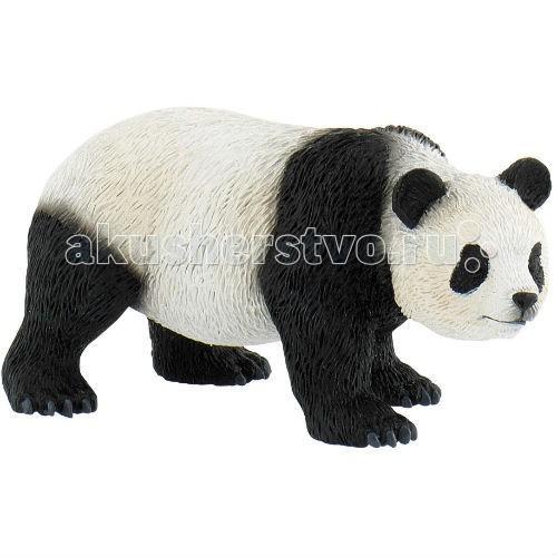 Bullyland Фигурка Панда 11 смФигурка Панда 11 смBullyland Фигурка Панда 11 см - такой мягкий, такой пушистый и милый мишка! Живая игрушка! Каждый ребенок хочет иметь такую игрушку. Но одно дело мягкая игрушка и совсем другое – фигурка. С ней гораздо больше возможностей для игры, она не занимает много места. Фигурка панды совсем как живая, только маленькая. Те же глазки, лапки, смешной нос, расцветка. Вы можете собирать коллекцию из серии Дикие животные, и у вашего ребенка будет возможность фантазировать.   Игрушка выполнена из высококачественных, нетоксичных материалов и абсолютно безопасна для детей.   Размер: 107 х 65 х 56 мм<br>