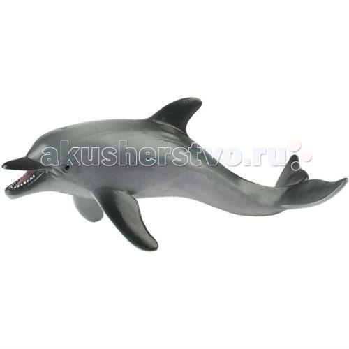 Bullyland Фигурка Дельфин 17 смФигурка Дельфин 17 смBullyland Фигурка Дельфин 17 см - уникальное животное, аналога которому в природе не существует. Как показывают исследования, мозг дельфина тяжелее человеческого на 300 граммов и имеет в два раза больше извилин в коре головного мозга. Животные умеют общаться между собой, обладают самосознанием и эмпатией, свойственными высшим существам. Фигурка дельфина очень интересна. Рассматривая животное, ребенок познает обитателей водного мира, создает представление о жизни, существующей вокруг нас.   Игрушка сделана из высококачественных, нетоксичных материалов и абсолютно безопасна для детей.   Размер: 170 х 62 х 67 мм<br>