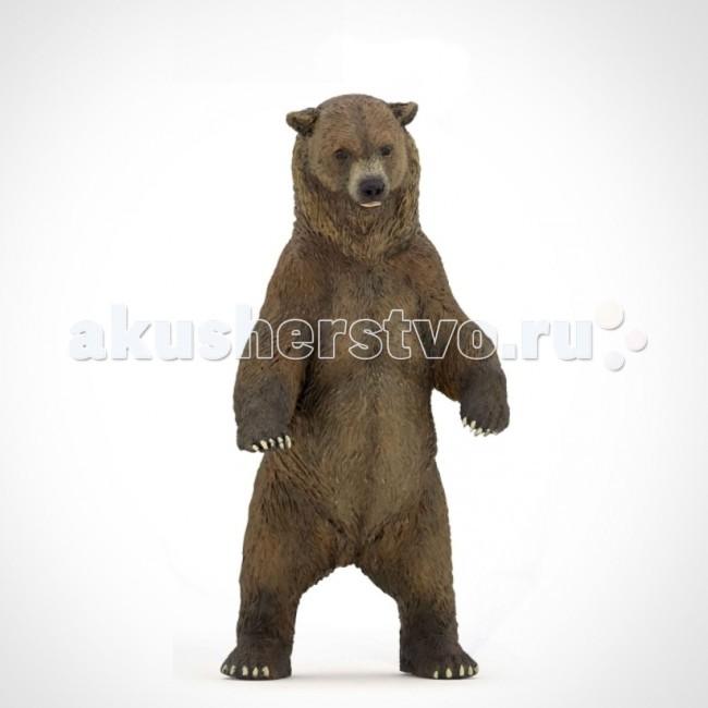 Papo Игровая реалистичная фигурка Медведь гризлиИгровая реалистичная фигурка Медведь гризлиИгровая реалистичная фигурка Медведь гризли 50153  Ручная роспись. Все фигурки Papo проходят тщательную подготовку и обработку, поэтому они крепкие и долговечные.  Материал: высококачественный полимерный материал.<br>