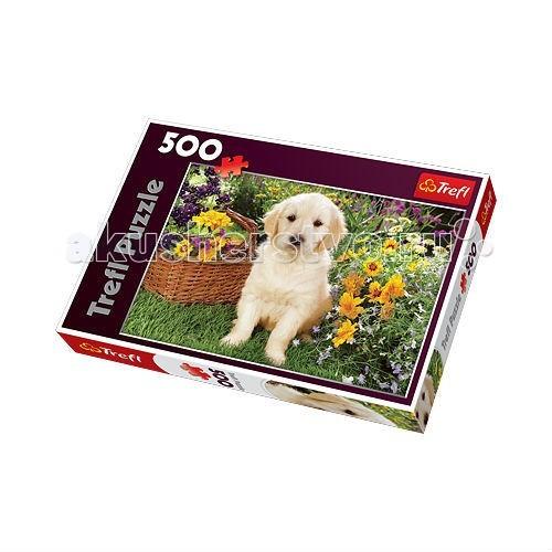 Trefl Пазл Лабрадор в саду 500 деталейПазл Лабрадор в саду 500 деталейTrefl Пазл Лабрадор в саду 500 деталей - собаки считаются самыми верными друзьями человека. Это очень добрые, чуткие и милые животные.   Пазл Лабрадор в саду выпущен известным польским брендом Trefl, который существует на рынке уже много лет, имеет большой ассортимент товара на любой вкус, размер, цвет и даже возраст.   На картинке изображен очаровательный щенок лабрадора, сидящий возле корзинки свежих цветов на зеленом газоне.  Размер готового пазла: 48 х 34 см  Количество элементов: 500 шт<br>