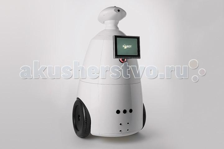 R.Bot Интерактивный мобильный робот 100
