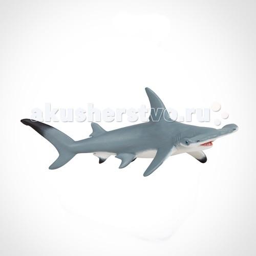 Papo Игровая реалистичная фигурка Акула-молотИгровая реалистичная фигурка Акула-молотИгровая реалистичная фигурка Акула-молот 56010  Ручная роспись. Все фигурки Papo проходят тщательную подготовку и обработку, поэтому они крепкие и долговечные.  Материал: высококачественный полимерный материал.<br>