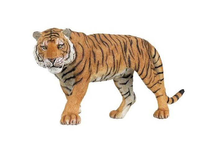 Papo Игровая реалистичная фигурка ТигрИгровая реалистичная фигурка ТигрИгровая реалистичная фигурка Тигр.  Ручная роспись. Все фигурки Papo проходят тщательную подготовку и обработку, поэтому они крепкие и долговечные. Материал: высококачественный полимерный материал.  Этот Суматранский тигр имеет впечатляющий вид. Пристальный хищный взгляд, красивая шерсть, с узором из черных полос, мощные лапы, кошачья грация - его красота просто завораживает!   Тигр - символ храбрости, он является бесспорным хозяином своей территории в Азии. Это плотоядное млекопитающее - самое крупное животное из семейства кошачьих в мире. Его можно легко узнать благодаря оранжевому меху и черным полосам, расположенными особым образом, определенным для каждого вида тигра. Охотится этот грозный хищник главным образом на оленей, кабанов, буйволов, а иногда даже на крокодилов. Происходя из Азии, этот вид тигра сегодня считают вымирающим и находится под защитой.<br>