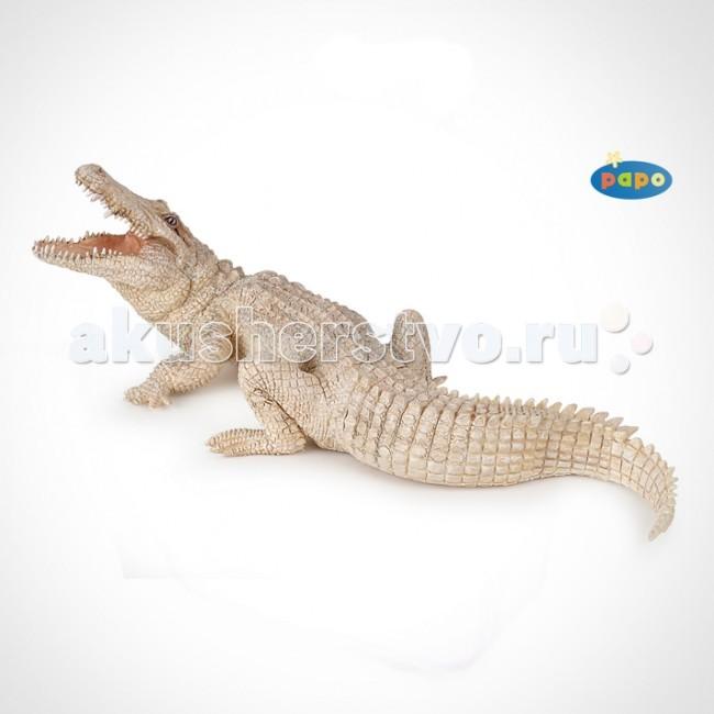 Papo Игровая реалистичная фигурка Белый крокодилИгровая реалистичная фигурка Белый крокодилИгровая реалистичная фигурка Белый крокодил 50140  Ручная роспись. Все фигурки Papo проходят тщательную подготовку и обработку, поэтому они крепкие и долговечные.  Материал: высококачественный полимерный материал.<br>