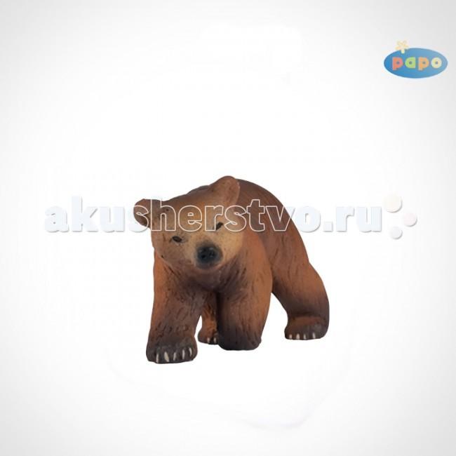 Papo Игровая реалистичная фигурка Детёныш бурого медведяИгровая реалистичная фигурка Детёныш бурого медведяИгровая реалистичная фигурка Детёныш бурого медведя 50031  Игровые реалистичные фигурки животных Papo. Ручная роспись. Все фигурки Papo проходят тщательную подготовку и обработку, поэтому они крепкие и долговечные.  Материал: высококачественный полимерный материал.  В теплой берлоге, когда медведица еще в спячке, у нее появляются на свет медвежата. Обычно 2 или 3 крохотных медвежонка рождаются слепыми и глухими, и весят всего около 500 грамм. Всю зиму малыши греются на мамином животе, питаясь её жирным молоком. Но уже через три месяца, весной, медвежата покидают свою берлогу вслед за матерью, способные самостоятельно есть ягоды, зелень и насекомых.   Медвежата радостно бегают по лесу, играют друг с дружкой, валяются на траве, создавая немало хлопот своей матери. Медведица обучает их лазанью по деревьям, плаванью и охоте на рыбу и дичь, а также показывает, где можно отыскать вкусные коренья и растения.<br>