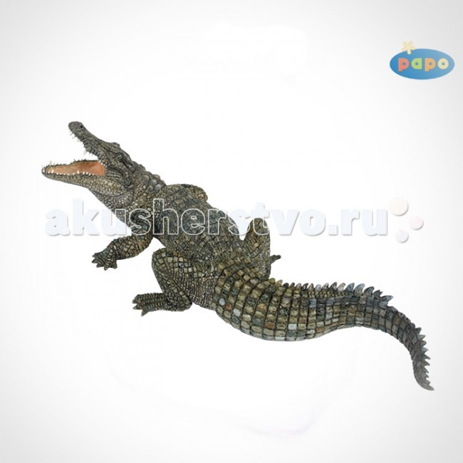 Papo Игровая реалистичная фигурка Нильский крокодилИгровая реалистичная фигурка Нильский крокодилИгровая реалистичная фигурка Нильский крокодил 50055  Ручная роспись. Все фигурки Papo проходят тщательную подготовку и обработку, поэтому они крепкие и долговечные.  Материал: высококачественный полимерный материал.<br>