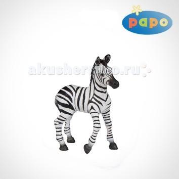 Papo Игровая реалистичная фигурка Детёныш зебры