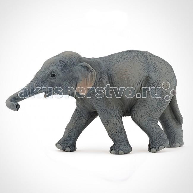 Papo Игровая реалистичная фигурка Азиатский слоненокИгровая реалистичная фигурка Азиатский слоненокИгровая реалистичная фигурка Азиатский слоненок 50132  Ручная роспись. Все фигурки Papo проходят тщательную подготовку и обработку, поэтому они крепкие и долговечные.  Материал: высококачественный полимерный материал.<br>