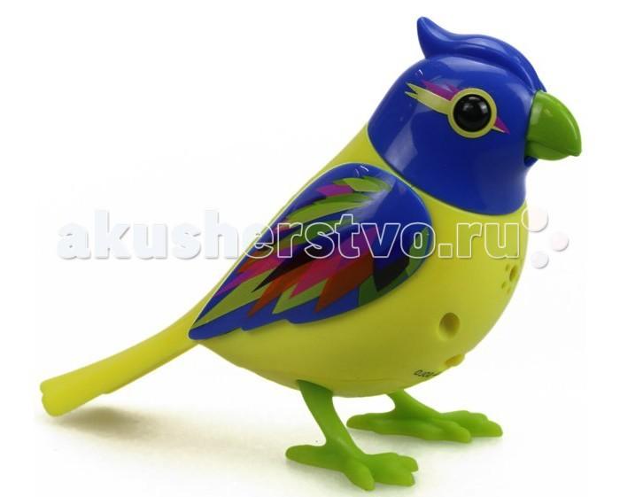 ������������� ������� Digibirds ������ � ������� - Digibirds������ � �������������������� ������� DigiBirds ������ � ������� ������� ����� ������ ������������� ���.  �����������: ���� ����� ����� �����, ������������ �������� ������, ���������� ��������� ��������� ������� �������, �� ��� ������ ����� ��������� ��� �����. ������, �� ������� ����� ������, �������� ��������, ���� � ���� ������, ����� �������� �����. ������� ����� �������� 20 ������ ������, �� ���� ������� ����������� ��������� ��� ��������� � ���������, ����� �������������� ��� 4 ���������, � ���� �������� � ���������� �����, ����� �������� ��� 10 �������������� ������ ��� ����. ����� ������ ������ �����, � ��� �������� ������ � ����������� ���� � ����. ����� ����� ���� ����, �� ���� � ������ �� ���������, �� ��� ����� ���� � ����� ��������� ������� ��� ������������� �������. ����� �������� �������� ������� ��������� ����������� ����, �������� ���������� � ���� ������ ������� ����� �������. ������� �������� �� 3 �������� ���� LR44, ������� ��������� � ���������. ������ ������: ������ - 7 �� ������ �����- 3,5 ��  ����� � ������������<br>