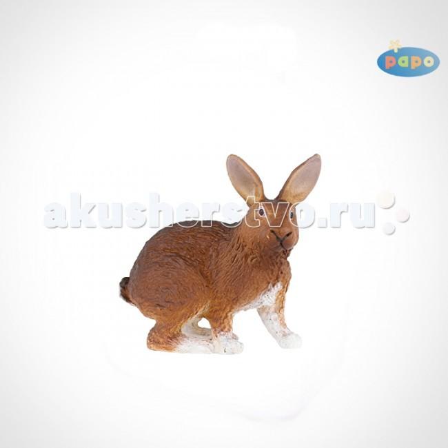 Papo Игровая реалистичная фигурка Коричневый кролик