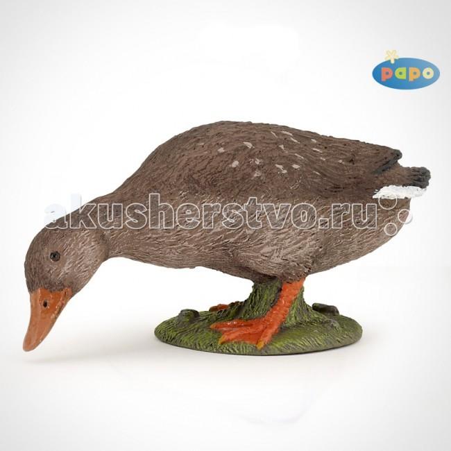 Papo Игровая реалистичная фигурка Клюющая утка