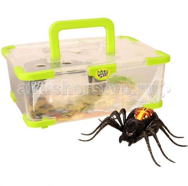 Интерактивная игрушка Moose Wild Pets Логово паучкаWild Pets Логово паучкаИнтерактивная игрушка Moose Логово паучка Wild Pets выполнено в виде прозрачного бокса. В нем удобно хранить игрушку, а также переносить ее. Коробка оснащена специальной ручкой, которая поможет ребенку без особых проблем выносить паука на улицу или к друзьям.  Особенности: Интерактивный паук от Moose имеет 3 режима игры.  Для того чтобы включить игрушку или перевести ее из одного режима в другой достаточно провести по спине паука. Там расположены два сенсора, до которых нужно дотронуться.  Глаза паука загорятся синим, он начнет ползать и искать укромные места, для того чтобы спрятаться.  Во втором режиме глаза паука загорятся зеленым цветом. Игрушка начинает активнее передвигаться и исследовать окружающую территорию.  В последнем режиме паук ведет себя более агрессивно. Он передвигается быстрее, может атаковать, а его глаза загораются красным светом. Для того, чтобы перевести его в обычные режимы достаточно еще несколько раз провести по сенсорам на спине. До тех пор пока глаза игрушки не загорятся синим или зеленым светом.<br>