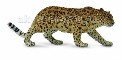 Gulliver Collecta Фигурка Амурский леопард XLCollecta Фигурка Амурский леопард XLGulliver Collecta Фигурка Амурский леопард XL является уменьшенной копией. Кажется, что игрушка вот - вот оживет.  Особенности: Все детали тщательно проработаны, что способствует развитию воображения и тактильных ощущений у ребёнка во время игры. Декоративная фигурка станет изысканным и уникальным сувениром, и понравится как детям, так и их родителям. Фигурка изготовлена из высококачественной пластмассы и раскрашены вручную..<br>