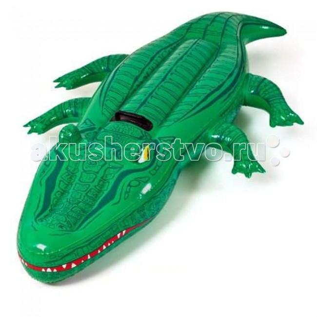 Bestway Надувной крокодил 168х79 смНадувной крокодил 168х79 смBestwey Надувной крокодил - это высококачественная надувная игрушка для детей от 3 лет, которая несомненно станет их любимой забавой. Взяв ее с собой воду ребенок сможет весело и увлекательно провести время.<br>